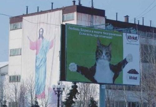 jesus cat - 7411243520