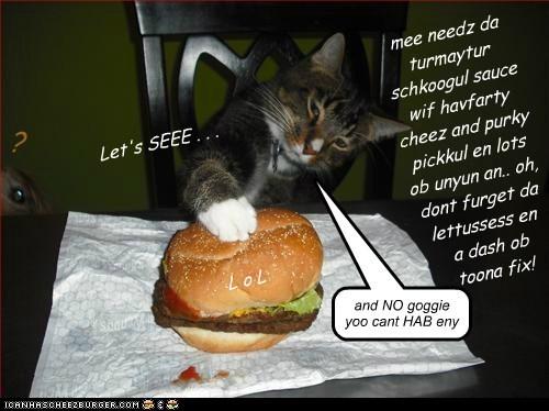 Cheezburger Image 7411382272
