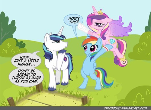 ponies cadance shining armor rainbow dash - 7412913920