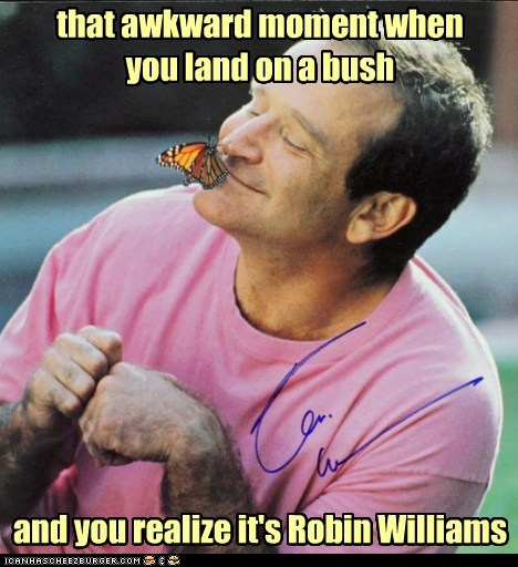 that awkward moment when you land on a bush and you realize it's Robin Williams