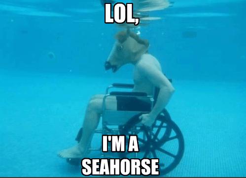 underwater IRL horse mask seahorses - 7414396928