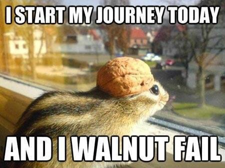puns chipmunk walnut funny - 7414493696