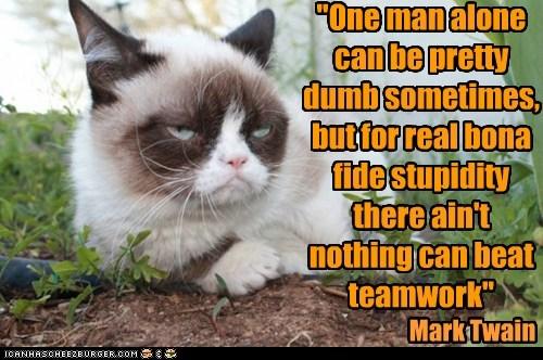 Grumpy Cat mark twain dumb - 7414590464