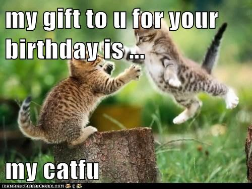 my gift to u for your birthday is ...  my catfu