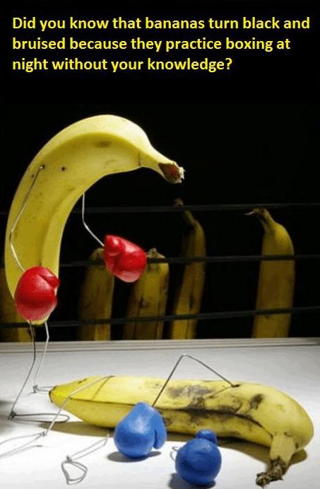 bananas - 7414818304