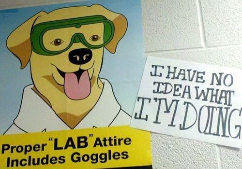labs signs puns athetits - 7414846976