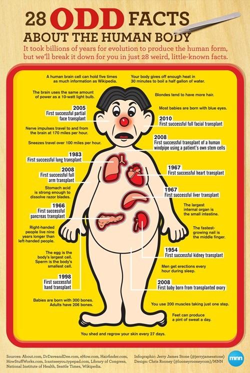 medicine infographics operations - 7415804928