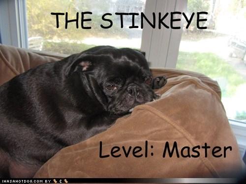 master stinkeye - 7415867648