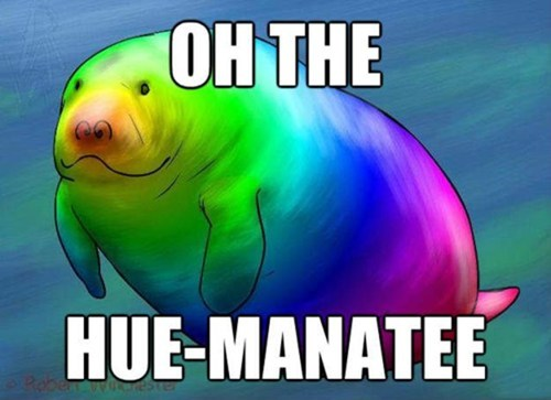 hue color manatee