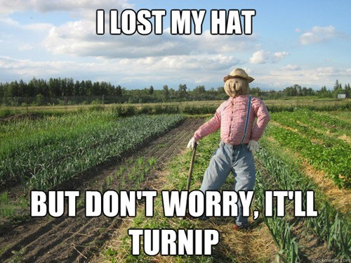 farmer turnip puns turn up