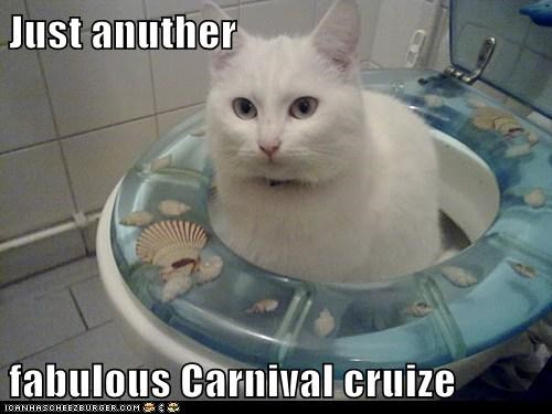 Just anuther  fabulous Carnival cruize