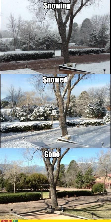 Colorado wtf spring snow - 7420033536