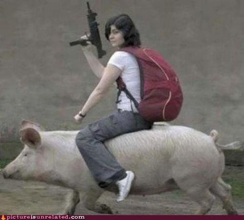 guns,wtf,uzis,pig