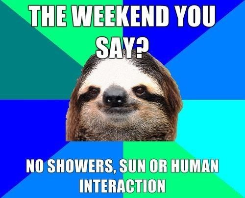 slob,weekends,socially lazy sloth