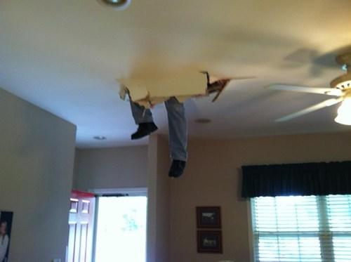 ceiling repairs whoops - 7421612288