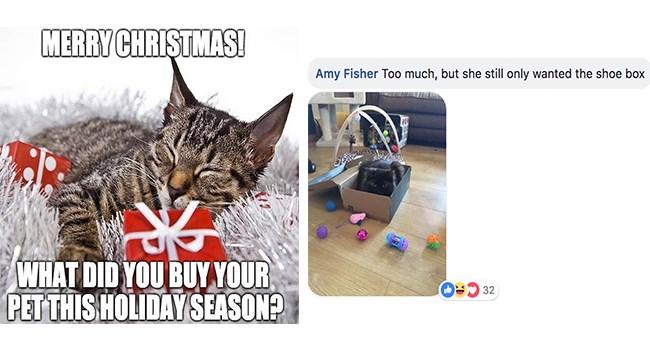 Christmas Gift for Pets