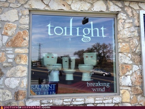 wtf puns twilight toilets