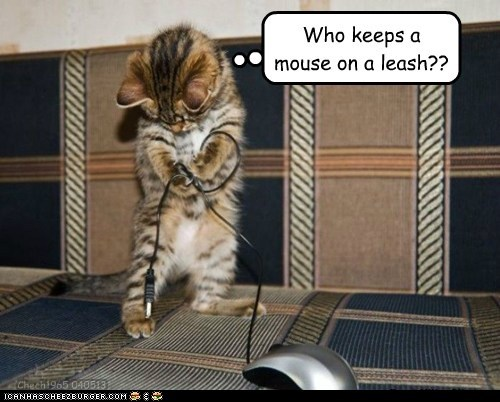 Who keeps a mouse on a leash?? Chech1965 040513