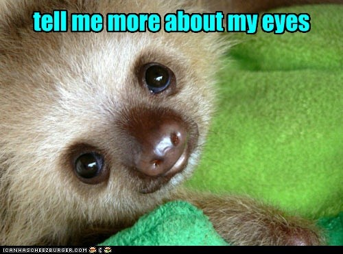 eyes jeepers creepers sloth - 7424421120