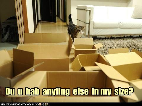 Du u hab anyfing else in my size?