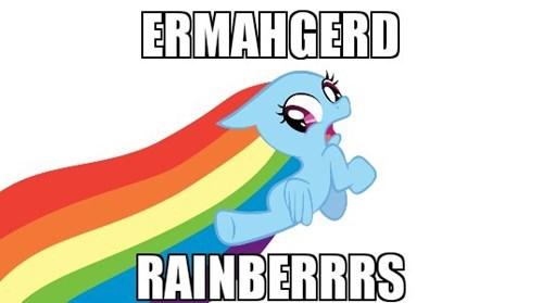 Ermahgerd Memes rainbow dash - 7427924992