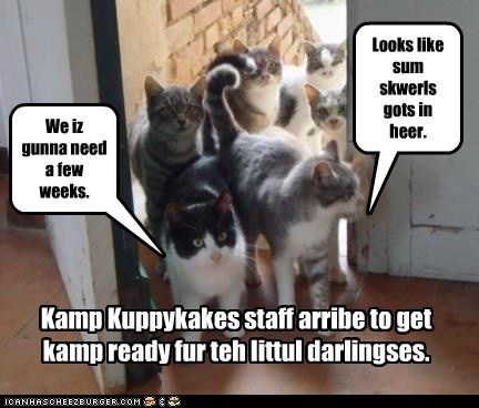Kamp Kuppykakes staff arribe to get kamp ready fur teh littul darlingses. Looks like sum skwerls gots in heer. We iz gunna need a few weeks.