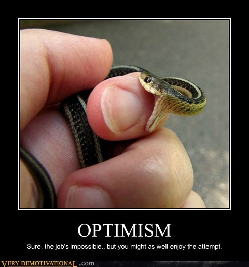 OPTIMISM Sure, the job's impossible., but you might as well enjoy the attempt.