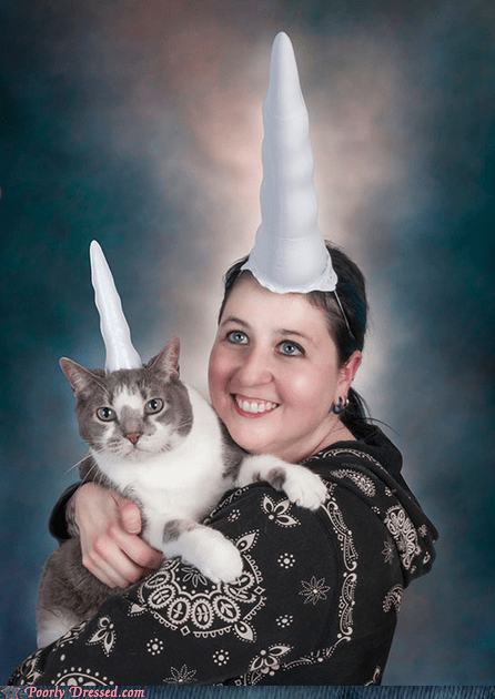 unicorn,pets,horn,Cats,funny,g rated,poorly dresed