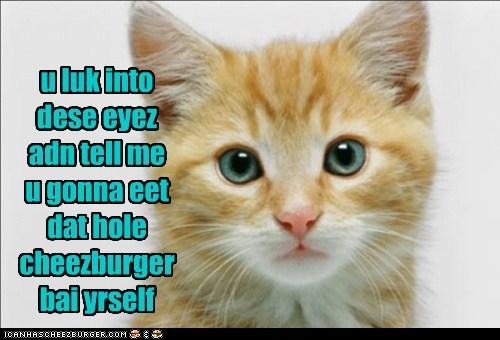 Cheezburger Image 7432161024