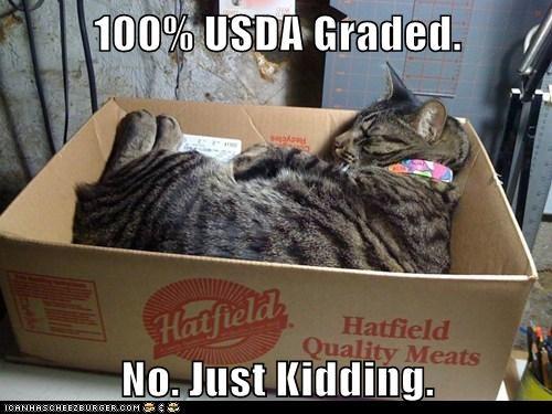100% USDA Graded.  No. Just Kidding.