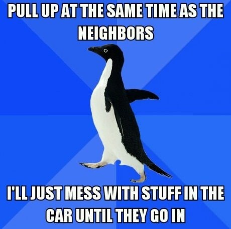 socially awkward penguin,neighbors