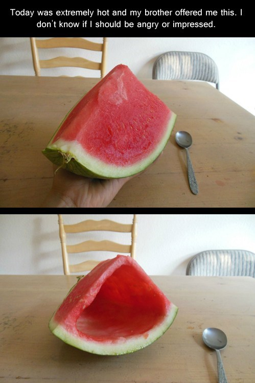 watermelon,hot day,hollow watermelon prank,funny,fruit