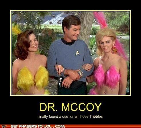 tribbles Star Trek funny - 7432791552
