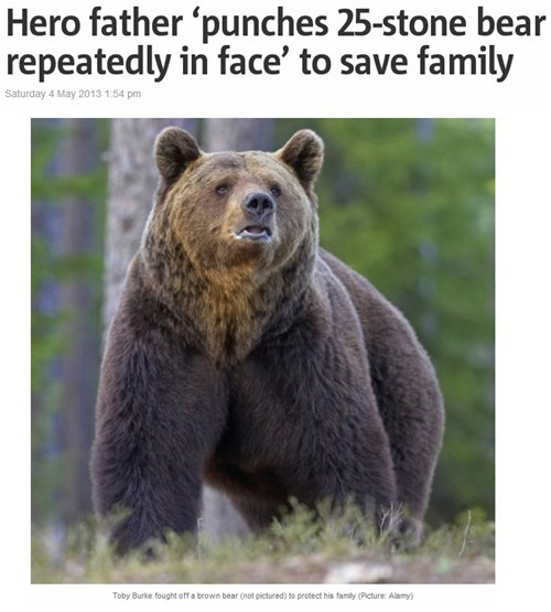 completely relevant news,bears,dad,BAMF