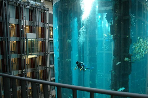 scuba hotel design aquarium pool