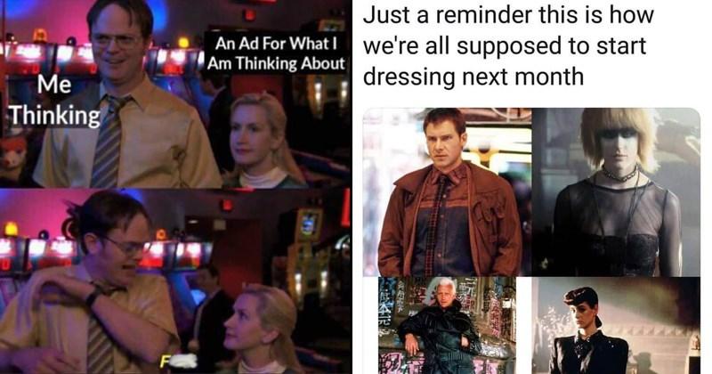 amusing memes, funny memes, stupid memes