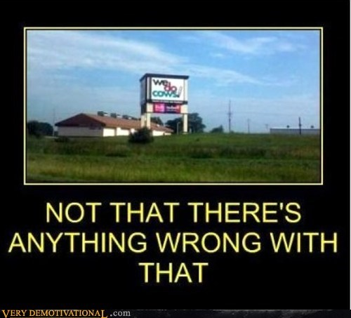 wtf slogan funny cows - 7434667008