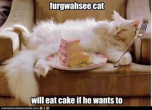 furgwahsee cat will eat cake if he wants to