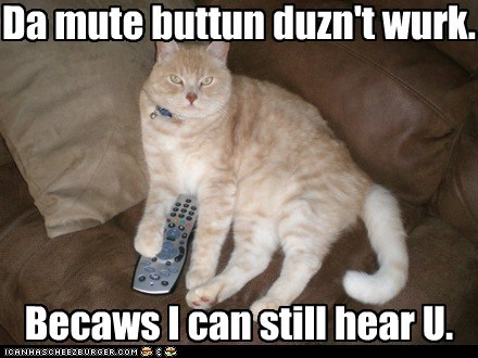 Da mute buttun duzn't wurk. Becaws I can still hear U.