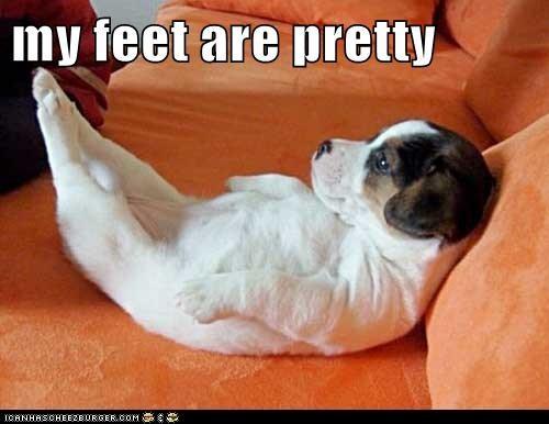 my feet are pretty