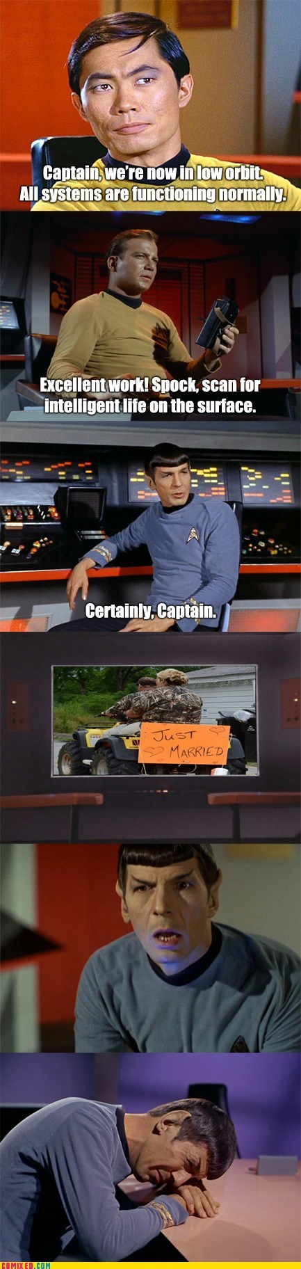 Captain Kirk,Spock,wedding,honey boo-boo,Star Trek,William Shatner,funny,george takei