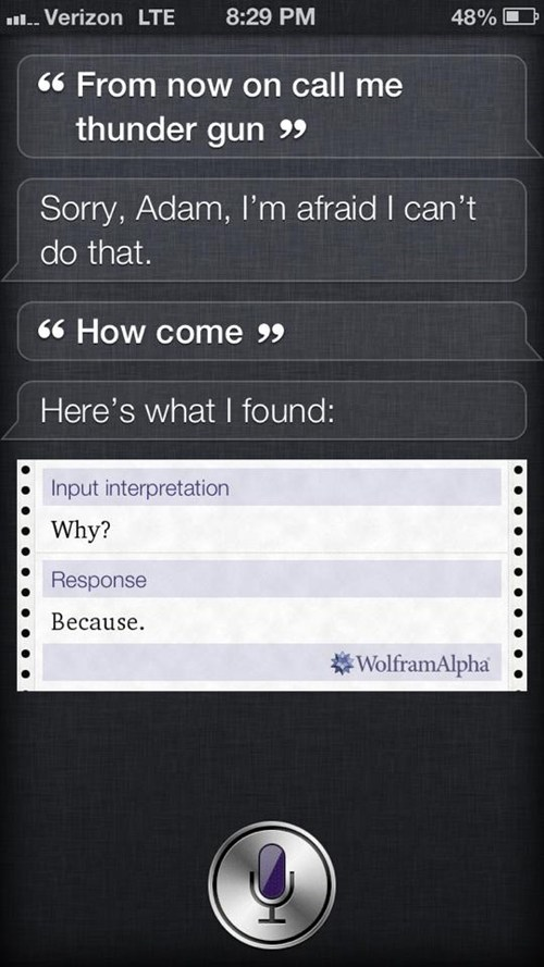 siri because reasons iphone - 7435164160