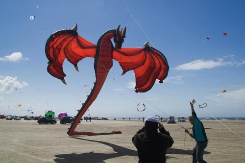 dragon design kites flying