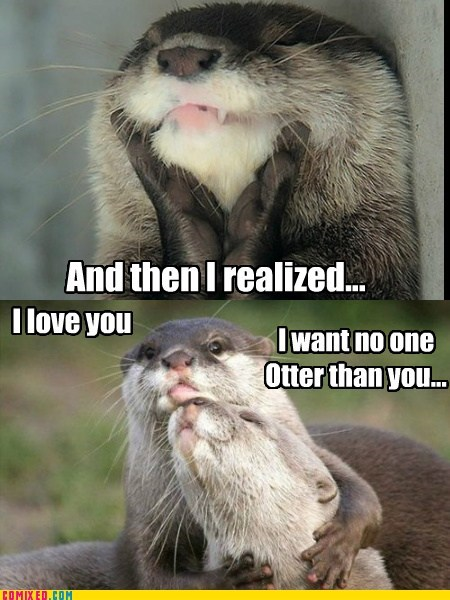 puns critters otters love funny - 7436089600