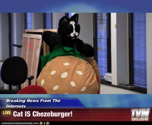 Cheezburger Image 7436250624