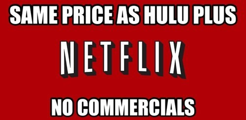 services hulu plus good guy netflix