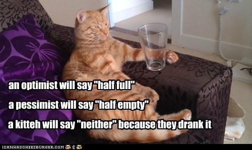 "an optimist will say ""half full"" a pessimist will say ""half empty"" a kitteh will say ""neither"" because they drank it"