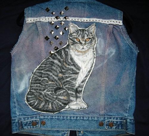 cat,vest,funny