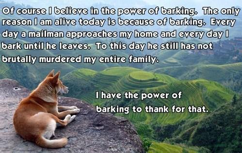 barking dogs - 7438426880