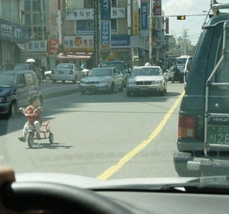 bicycle,in traffic,funny